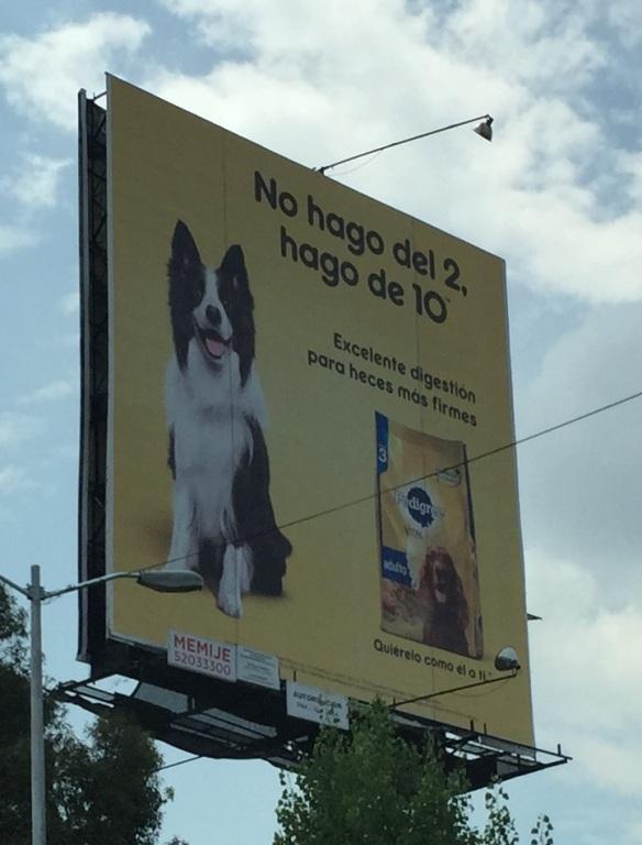 Sin comentarios. El valor añadido...heces más firmes. No hay nada como tener perro!